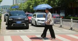 今天开始抓拍啦! 郑州这10个路口注意礼让斑马线