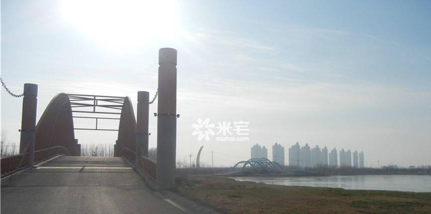 黄河春天实景图